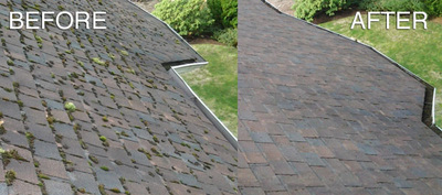 Roof cleaning Langley and Abbotsford