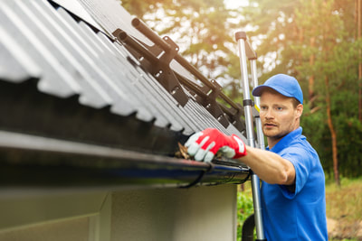 Langley BC Roof Cleaning Company