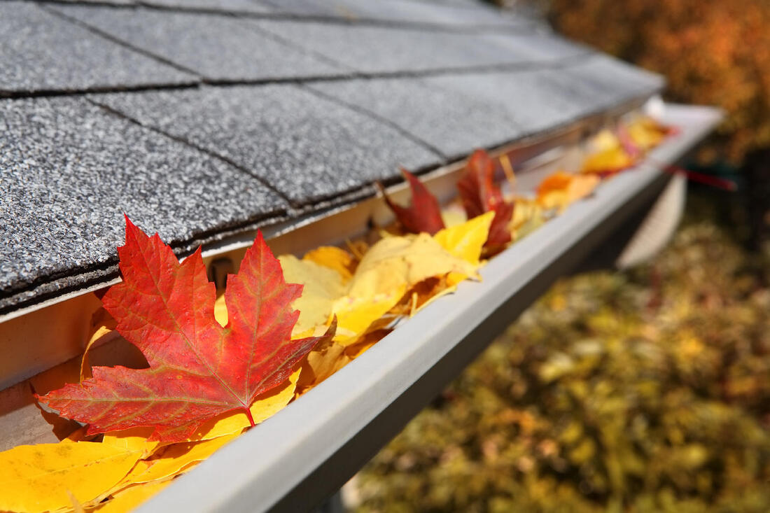 Gutter cleaning and repair Langley